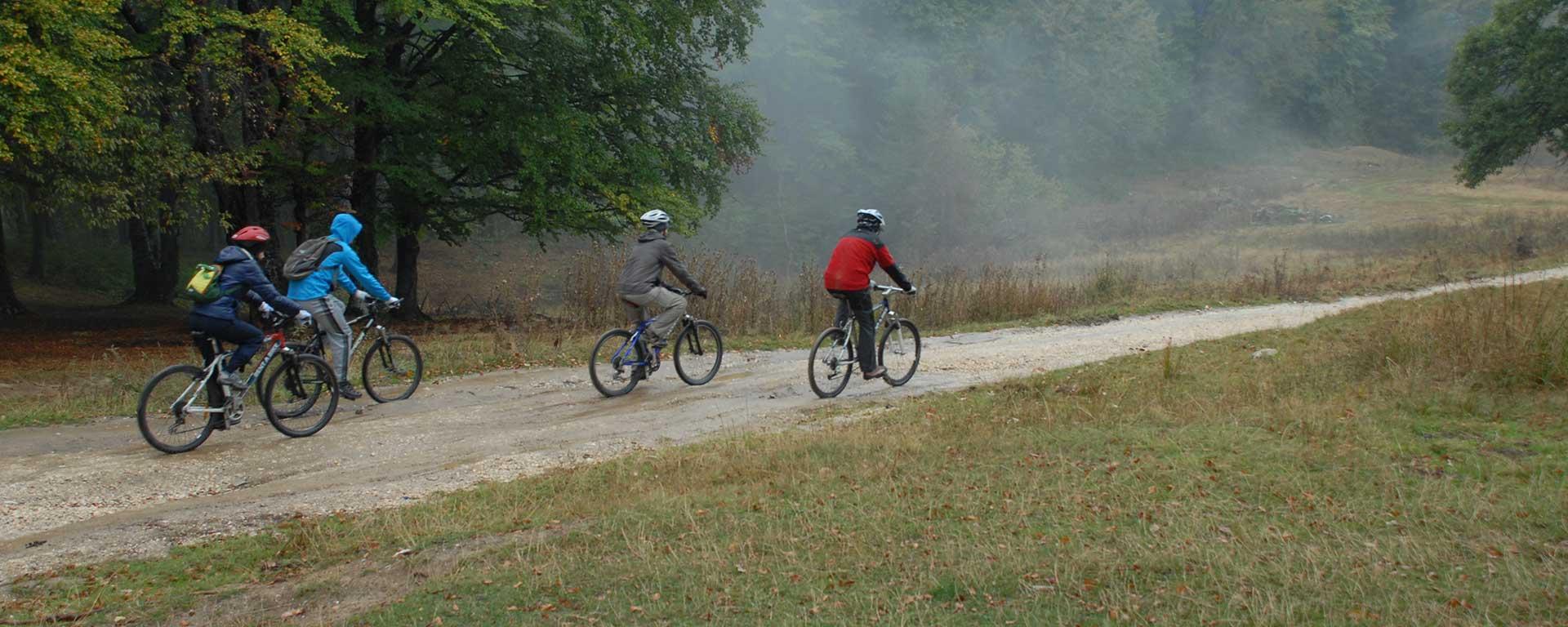 , Ture Mountainbike
